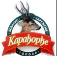 """LU """"Karađorđe"""" Topola"""